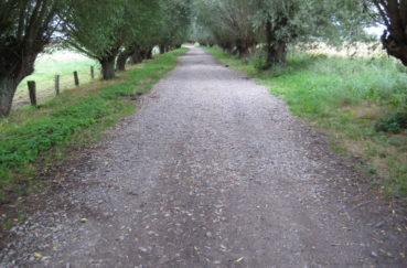 Tannenweg In Klempau Siedlung Ausgebessert