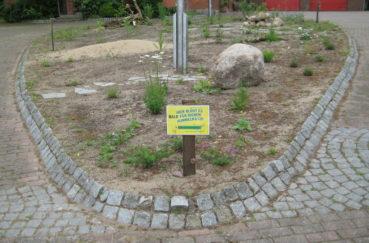 Bald Ein Paradies Für Hummeln, Bienen & Co: Das Wildblumenbeet Vor Dem Feuerwehrhaus