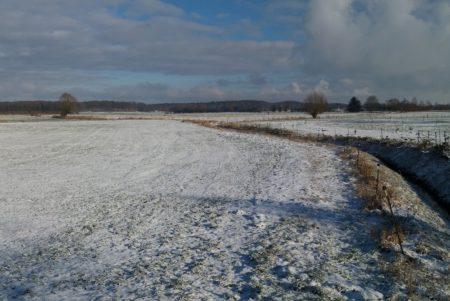 Weiße Weite des Moores in Klempau Siedlung